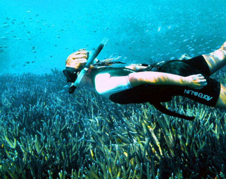 diving-and-snorkelling